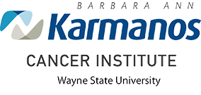 Karmanos Medical Play Clinics pic